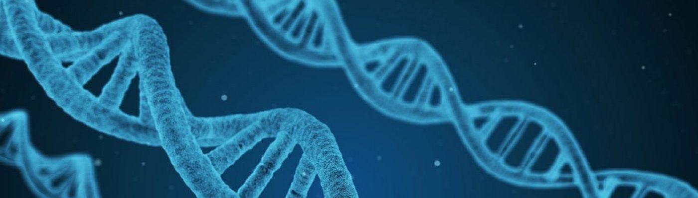 CRISPR 2018
